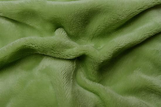 Obrázok z Prostěradlo mikroflanel kiwi (zelená) 90x200x20 cm