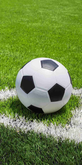 Obrázok z Osuška Football 70x140 cm