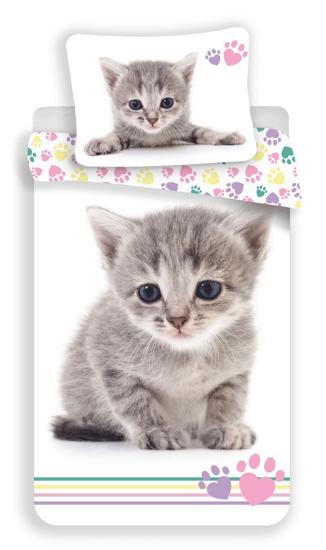 Obrázok z Povlečení fototisk Kitten colour 140x200, 70x90 cm
