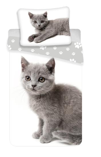 Obrázok z Povlečení fototisk Kočka grey 02 140x200, 70x90 cm