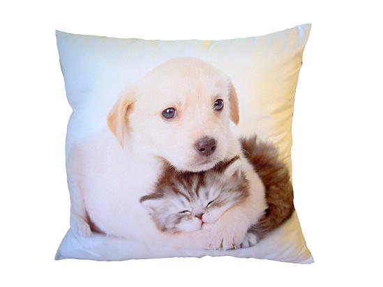 Obrázok z Fotopolštářek Pejsek objímající kotě 40x40