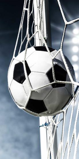 Obrázok z Osuška Football 02 70x140 cm